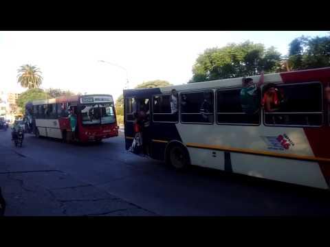 Los bondis de la hinchada de ITUZAINGÓ! - La Banda del León - Ituzaingó