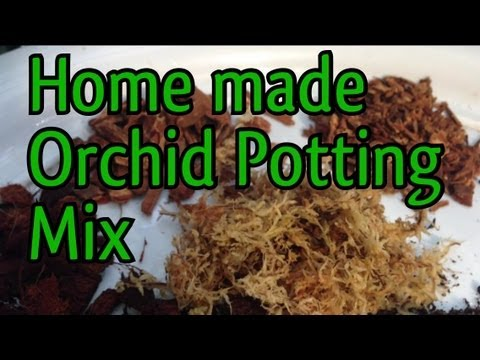 My Home made orchid potting mixes. Orchid Potting mix to repot various kinds of Orchids
