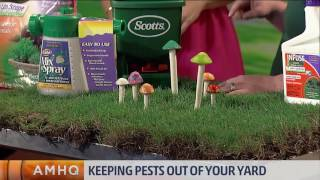 Pike Nurseries is in the AMHQ studio showing you how to keep pests, like pesky fire ants, out of your yard.