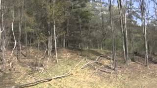 Huntingdon (PA) United States  city images : 10 Acre Wooded Parcel For Sale near Huntingdon PA