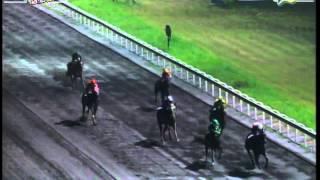 RACE 5 MINALIM 10/03/2014