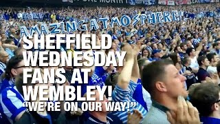 """""""We're on our way!"""" Sheffield Wednesday fans singing, bouncing and chanting at Wembley during the 2016 Championship play-off final v Hull City!SWFC succumbed in the game to a fantastic Hull City goal, losing 1-0, but the Owls supporters were outstanding before, during and after the game.SUBSCRIBE FOR UPDATES! http://www.youtube.com/subscription_center?add_user=deejayone1Sheffield Wednesday Football Club is a football club based in Sheffield, South Yorkshire, England, who are competing in the Football League Championship, the second tier of the English Football League System. Sheffield Wednesday are one of the oldest professional clubs in the world and the third oldest in the English league. They won the second football competition ever held, the Cromwell Cup, which remains in their possession. The Wednesday, as they were named until 1929, were founding members of The Football Alliance in 1889, and its first champions that inaugural season. The Wednesday joined The Football League three years later when the leagues merged. Sheffield Wednesday were also one of the founding members of The Premier League in 1992.Their main rivals are Sheffield United, the two clubs having contested the Steel City derby on a regular basis for some 100 years. Barnsley, Leeds United, Rotherham United, Chesterfield and Doncaster Rovers are also local rivals. The club has spent the majority of its history in the top flight of English football since joining the Football League in 1892 under the name of The Wednesday Football Club. They have won four League titles, three FA Cups and one League Cup, but their League Cup triumph in 1991 is their only major trophy since 1935. They did reach both domestic cup finals in 1993, but lost 2--1 to Arsenal at Wembley on both occasions. They also lost the 1966 FA Cup final to Everton 3--2, having led 2--0.They play their home matches at Hillsborough Stadium in the north-western suburb of Owlerton from which the club gained its nickname, The Owls. The stad"""