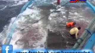 Video Kisah Tragedi nyata Kapal nelayan juwana pati tenggelam MP3, 3GP, MP4, WEBM, AVI, FLV November 2018