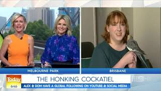Alex the Honking Bird on The Today Show!
