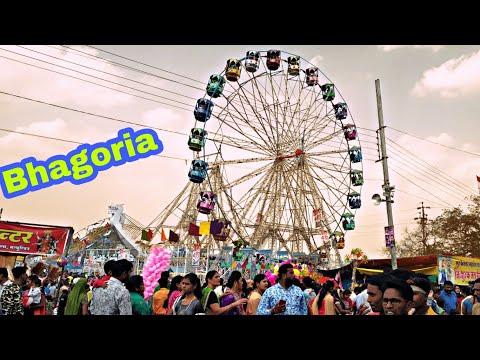 Video छकतला भगोरिया 2018  // chaktala bhagoriya /अलीराजपुर झाबुआ जिले के भगोरिया download in MP3, 3GP, MP4, WEBM, AVI, FLV January 2017