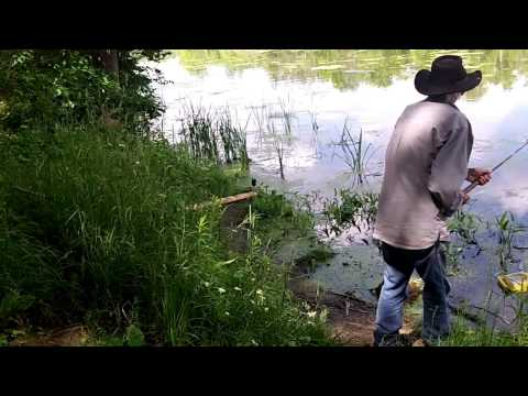 ловить ловче всех