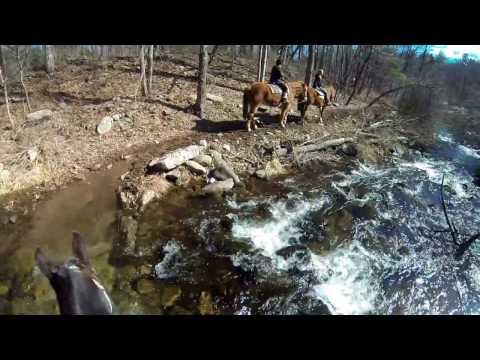 Mountain Creek Riding Stable