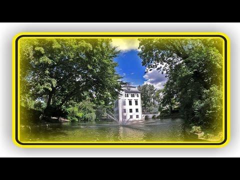 meinFrankfurt: Holzhausenpark