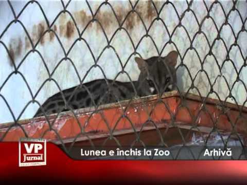 Lunea e închis la Zoo