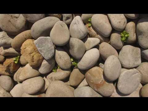 石ころだけの海岸   ホノホシ海岸(奄美大島・瀬戸内町)