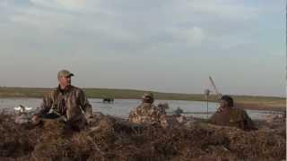 DUCK HUNTING 64 Ducks In 15 Min Canada