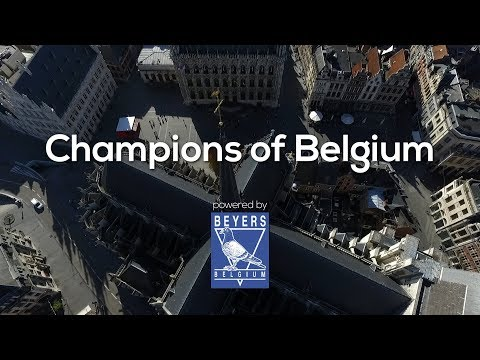 Champions of Belgium - powered by Beyers and pigeons360.com - Top Pigeon Fanciers