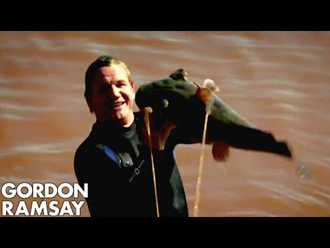 Catching Wild Catfish By Hand in Oklahoma - Gordon Ramsay