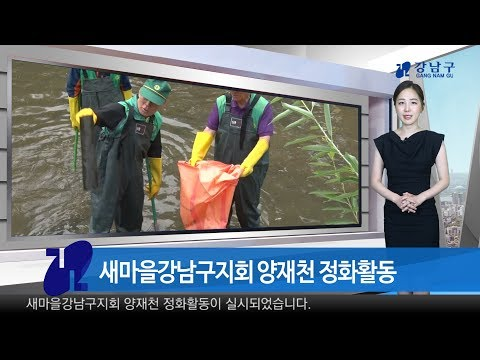 2017년 5월 다섯째주 강남구 종합뉴스