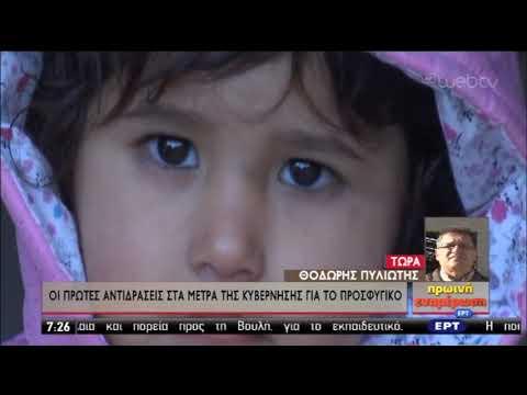 Μεταναστευτικό: Οι πρώτες αντιδράσεις στο κυβερνητικό σχέδιο | 21/11/2019 | ΕΡΤ