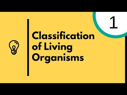 Characteristics Of Living Organisms IGCSE Biology