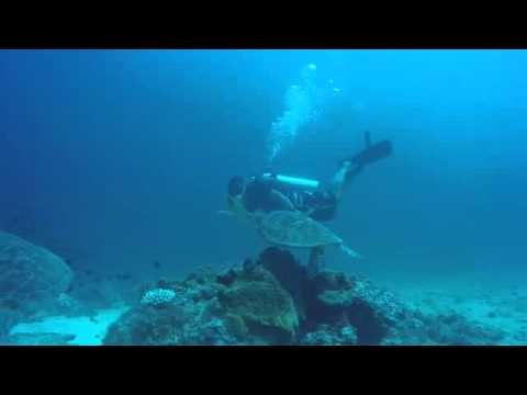 Keindahan Bawa Laut Pantai Bira Cocok Buat Diving