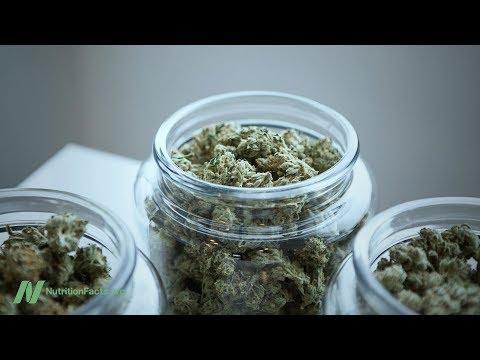 Nutrition - Is Marijuana Addictive?