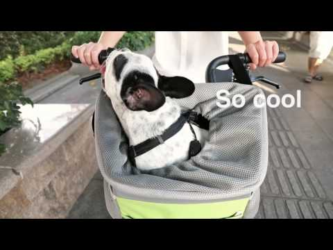 Petsfit Pet Carrier For Bicycle Small Dog Small Animal