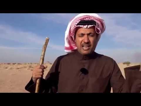 #فيديو : شاهد أين وقعت حرب البسوس