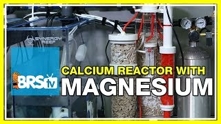 Why do I supplement magnesium while running a calcium reactor? | 52 FAQ