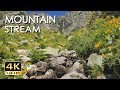 4K MOUNTAIN STREAM - RELAXING WATER SOUNDS -  ..