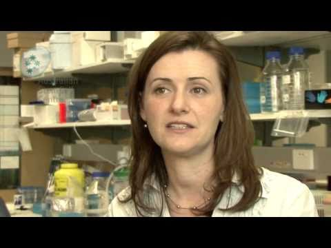 Clinical trials and stem cells: what patients should consider