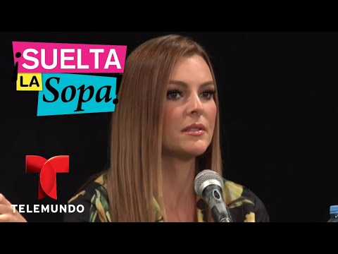 Notícias dos famosos - Majorie de Sousa habla de su relación con Julián Gil  Suelta La Sopa  Entretenimiento