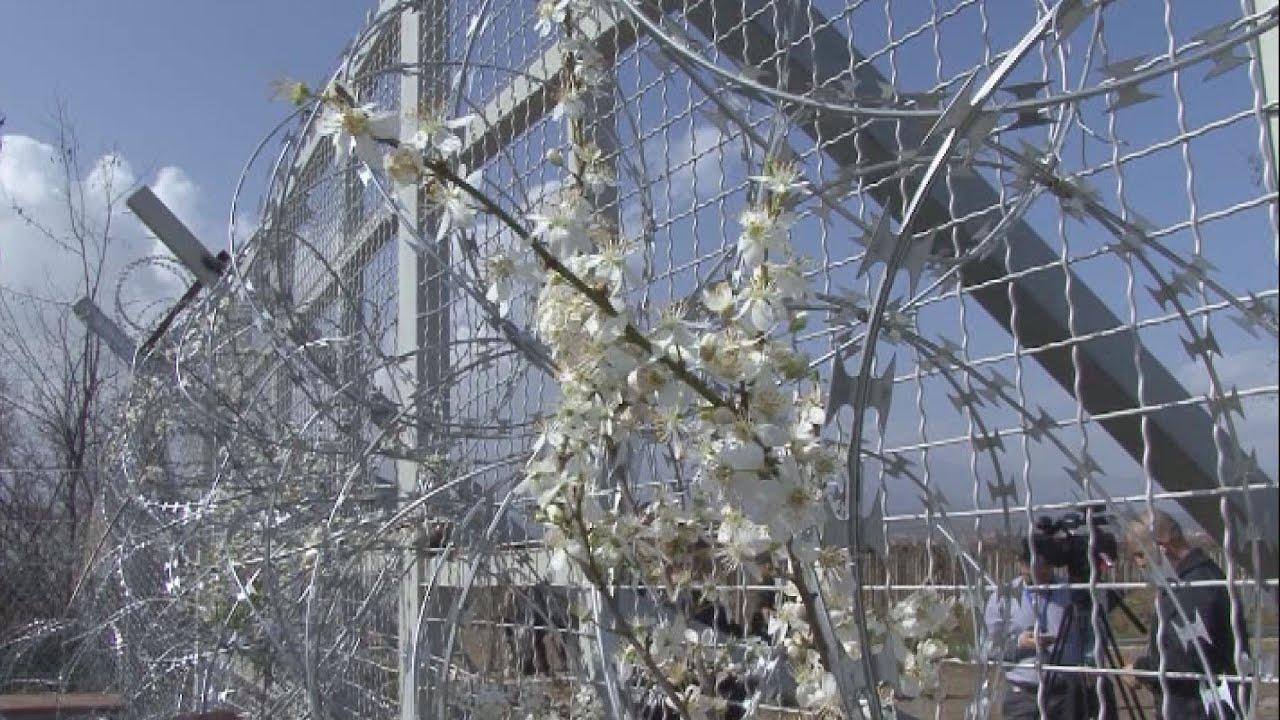 Ειδομένη:Στον φράχτη «ανθίζει» η ελπίδα.