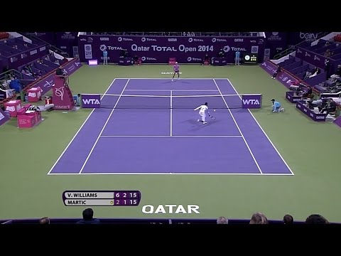 Venus Williams 2014 Qatar Total Open Hot Shot