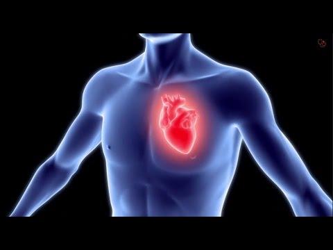 מחלות לב כליליות