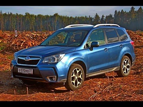 Subaru Forester на off road (2014). Горькая правда о подмосковном лесе (видео)