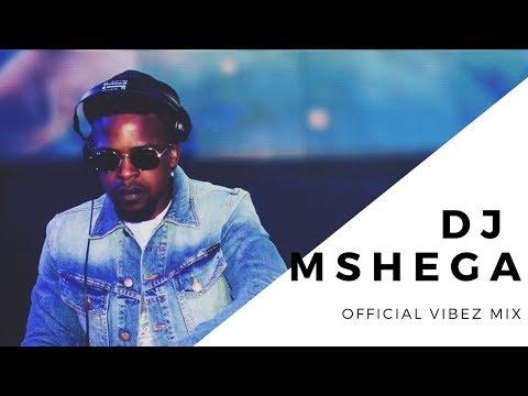 DJ MSHEGA | HOUSE MIX | DJ KAMANA |