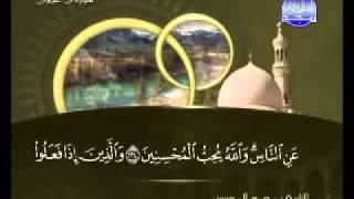 سورة ال عمران الشيخ محمد المحيسني