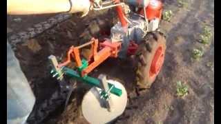 Окучивание картофеля мотоблоком Мотор Сич видео, 1 часть