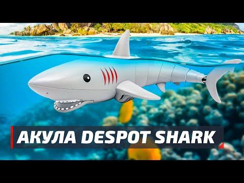 Радиоуправляемая акула Despot Shark