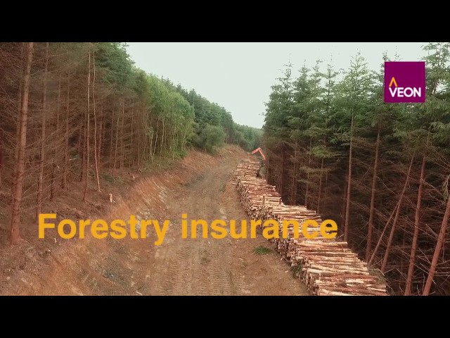 Veon Forestry