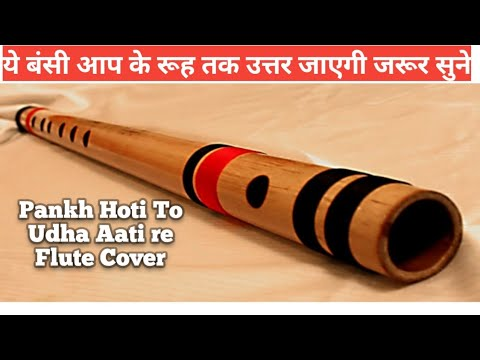 Pankh Hoti To Uda Aati Re Flute Instrumental Cover