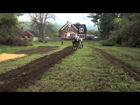 Edgr Plowing (видео)