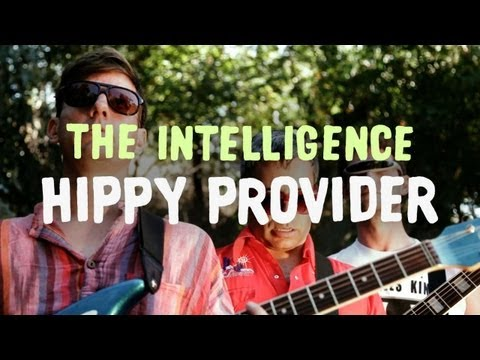 The Intelligence - Hippy Provider