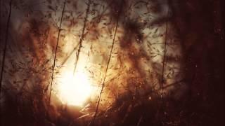 Zedd ft. Foxes - Clarity (Dil Remix)