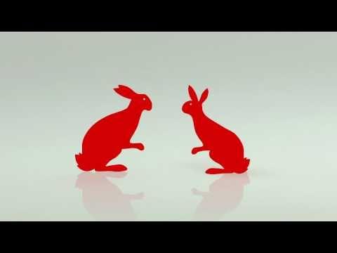 Rabbits Having Sex!!! by Big Richard