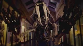 Nonton David Attenborough S Museum Alive Film Subtitle Indonesia Streaming Movie Download