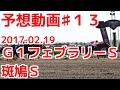 競馬で金をかせぐ♯13(予想)フェブラリーステークス2017年2月19日(日)