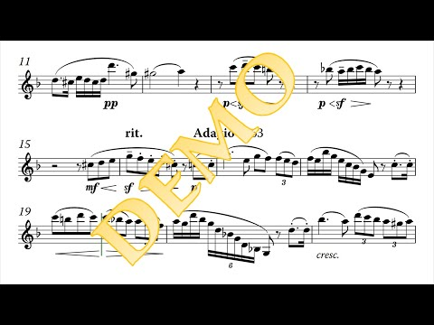 Jules Mouquet: Solo de concours for clarinet and piano (видео)