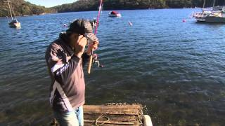 Bream fishing with prawn baits [VIDEO]
