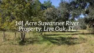 Live Oak (FL) United States  city photos : Suwannee River Property For Sale. 141 Acres near Live Oak, FL
