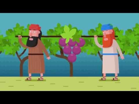The Search for King David's Wine - An evening of Biblical discoveries