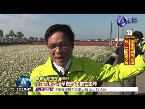 華視新聞 - 太保花海節登場 氣勢不輸北海道