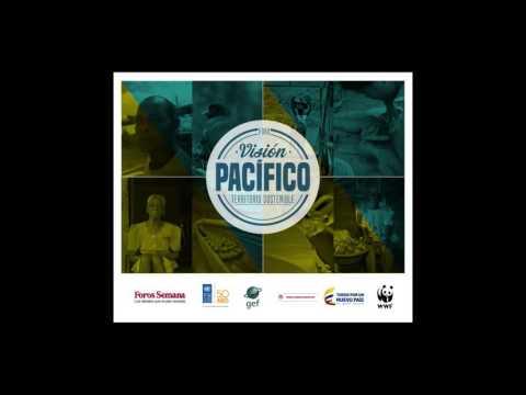 Acceda a la grabación en audio del desarrollo completo del foro 'Visión Pacífico: territorio sostenible', realizado en Bogotá el 18 de mayo.